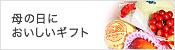 【産地支援】熊本県産『メロン(青肉or赤肉)』