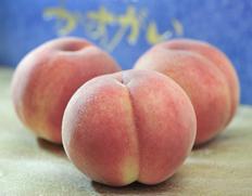「春日居の桃」特秀品