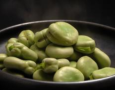 【相場下落】「蚕豆(そらまめ)」 鹿児島県指宿産 Lサイズ 約2kg