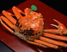 丹後魚政の松葉蟹とせこ蟹
