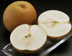大きいもので1玉1.2kg!栃木が生んだ超大玉梨 『にっこり梨』
