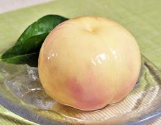世界一の桃を目指し、大阪・包近の松本さんの持つギネス記録の更新にも挑戦している古山浩司さんの桃です