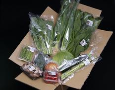【定期宅配はじめました】朝穫れ直送!さぬきこだわり市「旬の野菜セット」