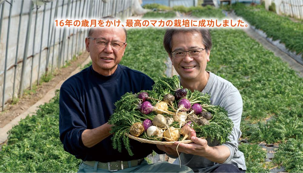 15年の歳月をかけ、最高のマカの栽培に成功しました。