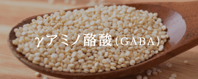 γアミノ酪酸(GABA)
