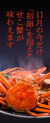 松葉ガニ・せこ蟹