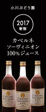 カベルネ・ソーヴィニオン100% ジュース