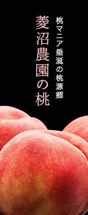 菱沼農園の桃