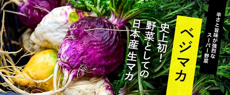 魚三の天然鴨