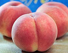 日本一と名高い、山梨「春日居の桃」