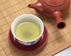 牧之原台地 植田製茶