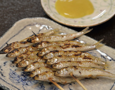 滋賀の魚三 琵琶湖の食文化