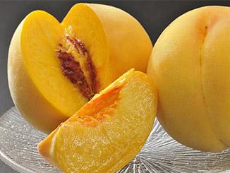 山形県産「高嶋さんグループの黄桃」の商品画像