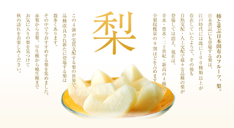 【梨 特集】 柿と並ぶ日本固有のフルーツ、梨。日本書記にも登場する梨は、江戸時代には既に100種類以上が存在していたようで、その後も自然交配・人工交配で様々な品種の梨が登場しては消え、現在は、幸水・豊水・二十世紀・新高の4種で全梨収穫量の9割ほどを占めます。この4強が実質支配する梨の世界で、品種改良され新たに登場する梨は数多くあります。その中で今おすすめする梨を集めました。赤梨から青梨、早生種から晩生種までお気に入りの梨を見つけて秋の訪れをお楽しみください。
