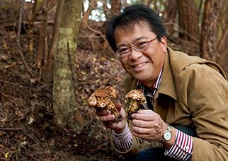慎重に松葉や土を取り除くと、そこには芳香を漂わせる松茸(まつたけ)が出現!感動です