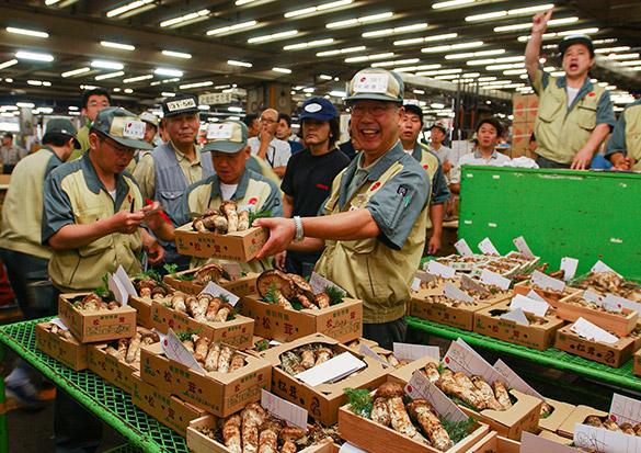 銀座の一流料理店も使う、豊洲市場の国産松茸(まつたけ)。豊洲市場のプロが松茸を目利きします