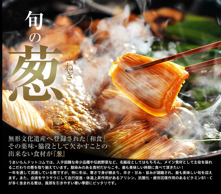 旬の葱 無形文化遺産へ登録された「和食」。その薬味・脇役として欠かすことの出来ない食材が『葱』