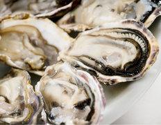 兵庫県室津 住栄丸の殻付き牡蠣(生食用)
