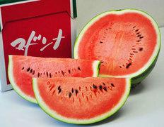 7/22〜27出荷 『マドンナスイカ』  北海道富良野産  3Lサイズ  1玉 7kg以上