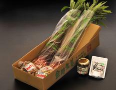 愛知産 金時生姜(温室栽培 矢生姜)入り「木村農園の味わいセット」 ※冷蔵