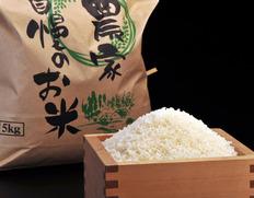 【平成30年度産】三重県産 中森さんの『伊賀米 コシヒカリ』 10kg