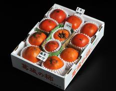 個性あふれる柿の在来品種を食べ尽くす