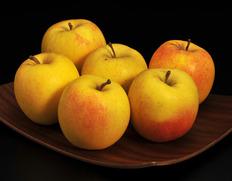 パリッと固くてジューシー!新品種りんご「もりのかがやき」【40箱限定】