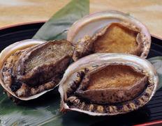 伊勢志摩の究極食材