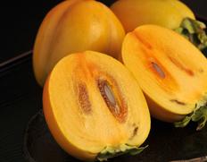 全国各地の柿