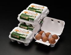 田子たまご村 「にんにく卵」 6個×6(計36個)