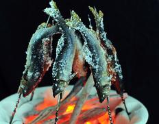 天然珪藻岩の切出し 『丸型串焼七輪(直径32.5cm×高さ20cm)』 スチール網×1枚、ステンレス串×10本付