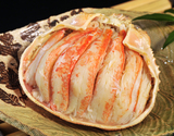 『松葉ガニの宝船』活けの状態で1000g級1匹 丹後半島沖産 ※冷凍の商品画像