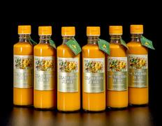【定期購入】『シーベリー100%果汁』 北海道産 希釈タイプ無糖 300ml×6本
