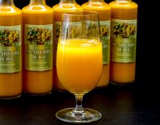 【定期購入】『シーベリー100%果汁』 北海道産 希釈タイプ無糖 300ml×9本