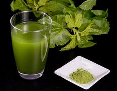 甘いものがやめられない。そんなあなたのための健康茶!「桑の葉茶」山梨県市川三郷町産 一瀬桑100%粉末
