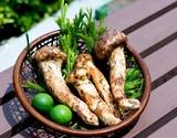 『幸せの国からのおすそ分け ブータン産松茸』無選別 約300g(4〜7本入)※冷蔵の商品画像