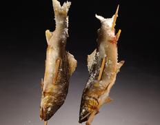 四万十川 天然鮎 (投げ網漁) 約600g(3〜12尾程度)高知県産 ※冷蔵