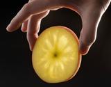 『こみつ(品種:こうとく)』青森県産りんご 約2kg(6〜9玉) ※常温の商品画像