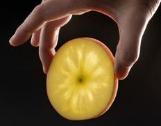 究極の蜜入り林檎 こみつ