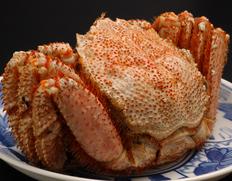 北海道産浜茹で毛蟹 特大サイズ(活で約1.2kg、茹で上がり約1kg)【2018年】※冷凍