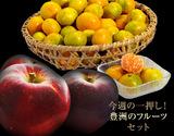 今週の一押し!豊洲のフルーツセット『南国の陽宝みかん2.5kg & 群馬の秋映りんご2kg』 ※常温の商品画像