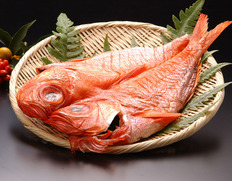 館山の金目鯛の一夜干 ※冷凍